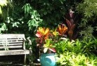 Adelaide Tropical landscaping 11