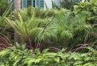 Adelaide Tropical landscaping 2