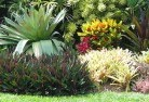 Adelaide Tropical landscaping 9